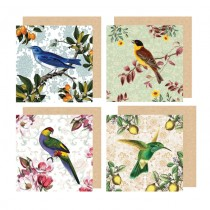Watercolour Vintage Bird Greeting Cards
