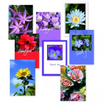 Thank You Cards/Envs Assorted