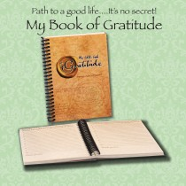 Little Book of Gratitude