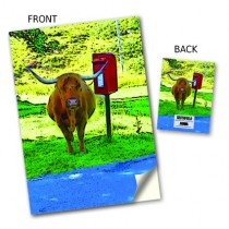 Highland Cow/Postbox Stitched Notebook