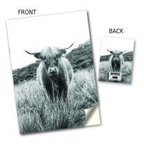 Highland Cow Image Stitched Notebook