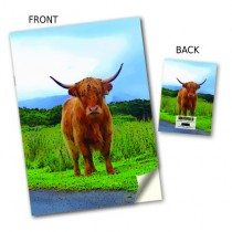 Country Highland Cow Stitched Notebook