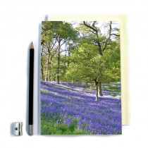 Bluebell Notebook
