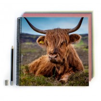 Highland Cow Scrapbook