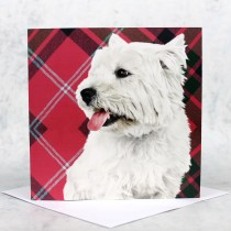 Tartan Westie Greeting Card