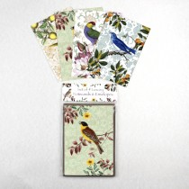 Watercolour Vintage Bird Notecards