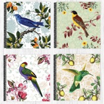 Vintage Bird Assorted Scrapbook
