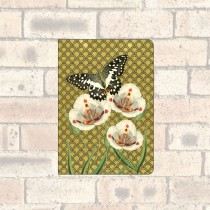 A6 Notebook-2 Round Corners-Butterfly