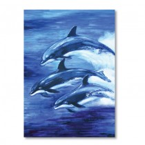 Whale & Dolphin