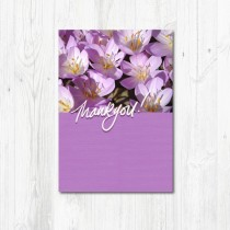 Notelet Pack-006