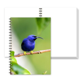 Plain Wiro Notebook product image