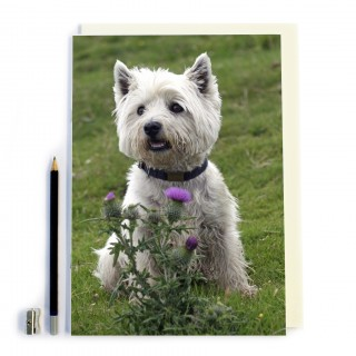 Dog & Thistle Notebook product image